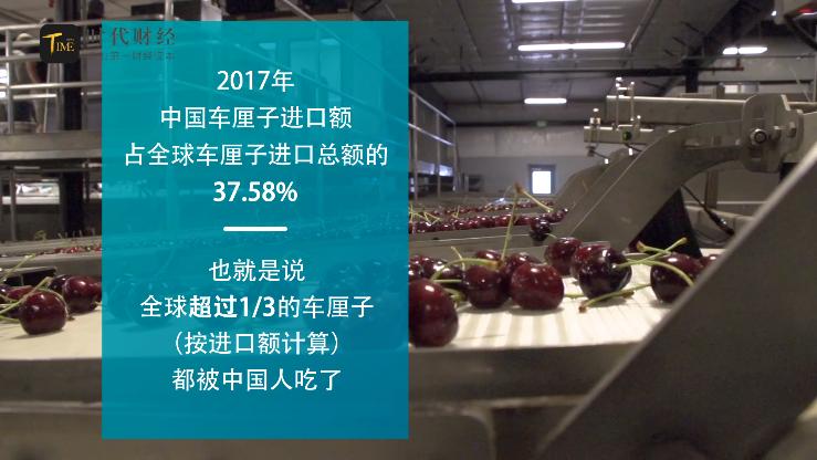 """""""车厘子自由""""贩卖焦虑?国人吃了超过全球进口额的1/3"""